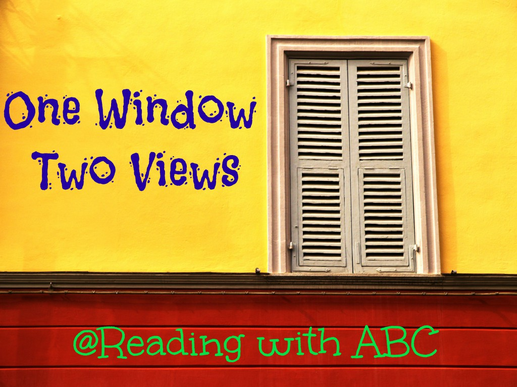 One Window, Two Views { What Makes a Good Synopsis?}