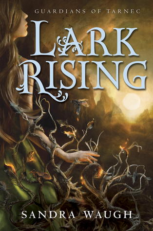 Review {Lark Rising by Sandra Waugh}