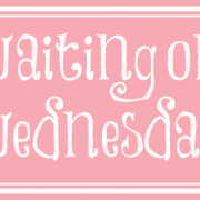 Waiting on Wednesday {Future Shock by Elizabeth Briggs}