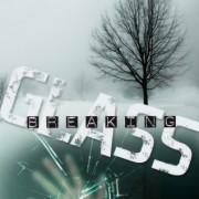 {Bieke Reviews} Breaking Glass + Vision by Lisa Amowitz