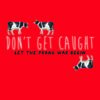 {Bee Reviews} Don't Get Caught by Kurt Dinan ~ Breakfast Club meets Ocean's 11? YES PLZ!